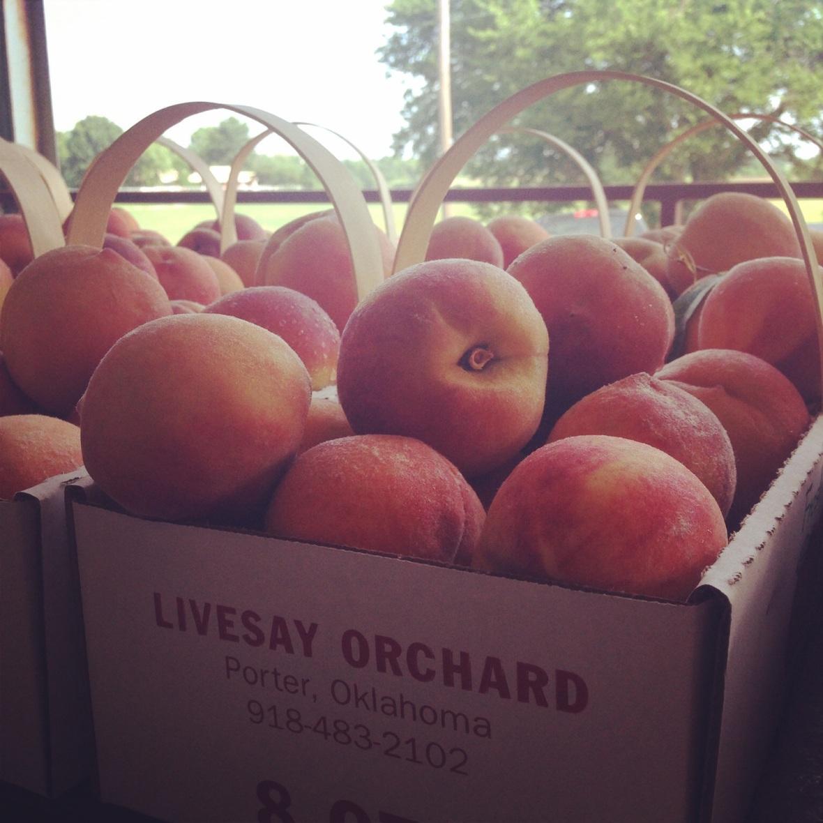 Livesay Orchard