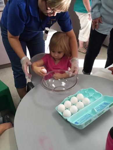 egg activity 3